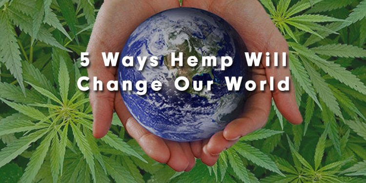 5 Ways Hemp Will Change Our