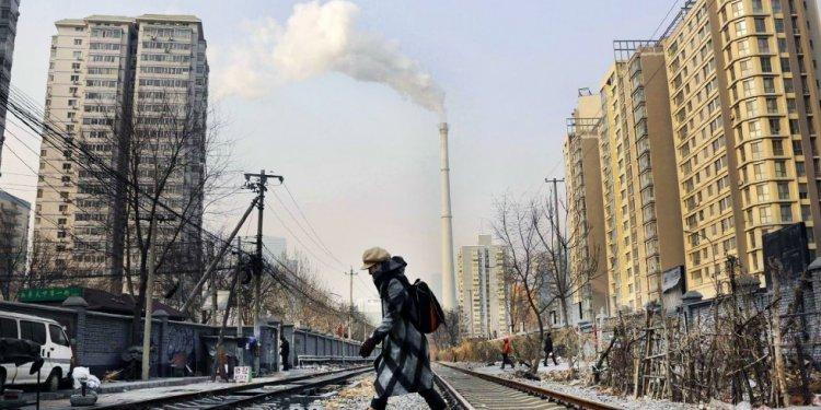 China s top new eco-warrior