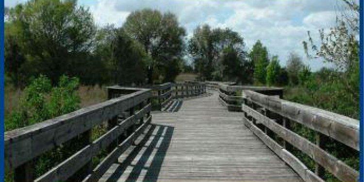 PEAR Park