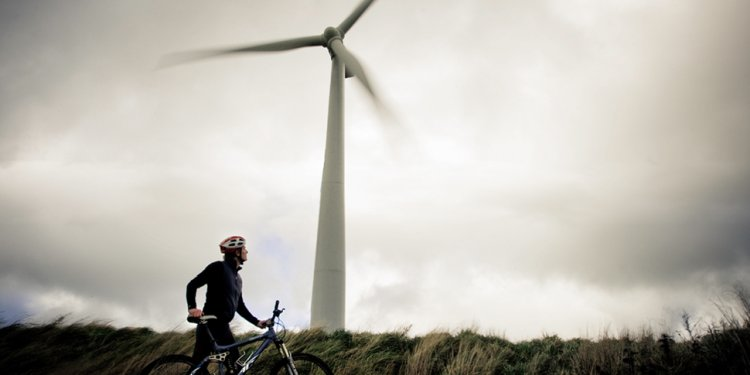 Man on bicycycle next to wind
