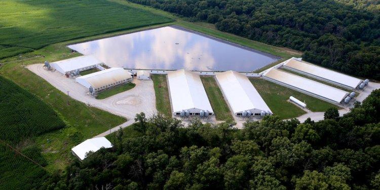 Hopkins Ridge Farms