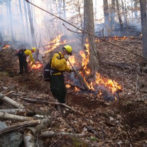 DEC forest ranger fighting fire
