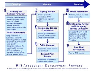 IRIS Process Diagram Illustrates the 7-Step Process for Developing IRIS Assessment