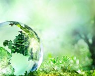 Environmental Protection Duty of Care Regulations